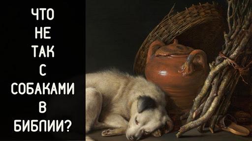Священник Алексей Волчков:Что не так с собаками в Библии?
